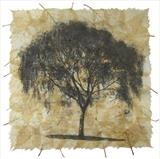Betula Pendula by Buckmaster-French, Artist Print, Etching on silver birch leaves