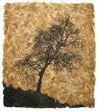Fraxinus by Buckmaster-French, Artist Print, Etching on ash leaves